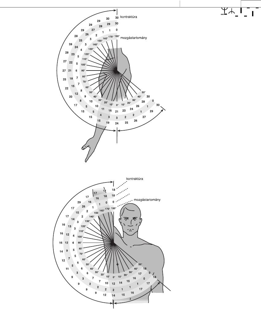a legjobb ízületi krém fájdalom a csípőízület dudorában